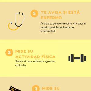 Infografía - Fitbark